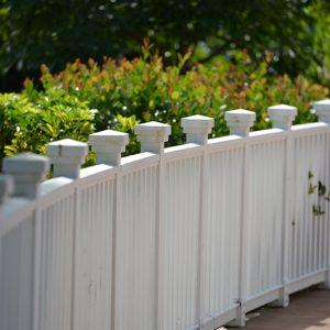 Benefits of native shrubs