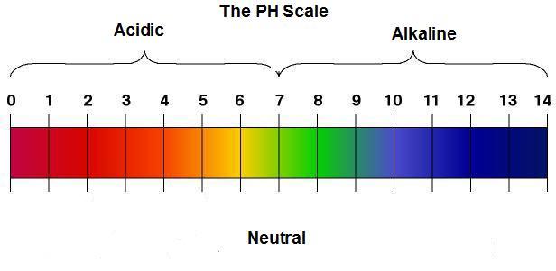ph-level